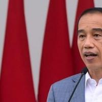 jokowi-memperkenalkan-anggota-dewan-pengawas-dan-dewan-direktur-lpi-5_169